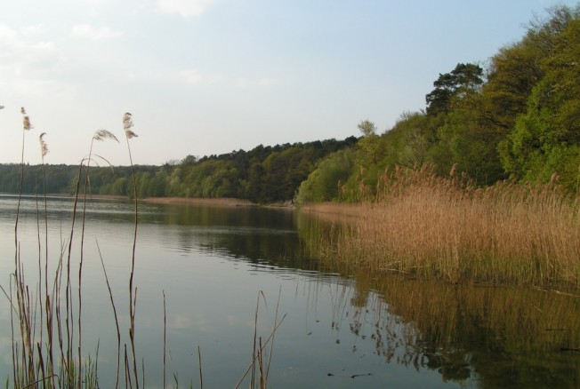Jezioro Góreckie w Mosinie