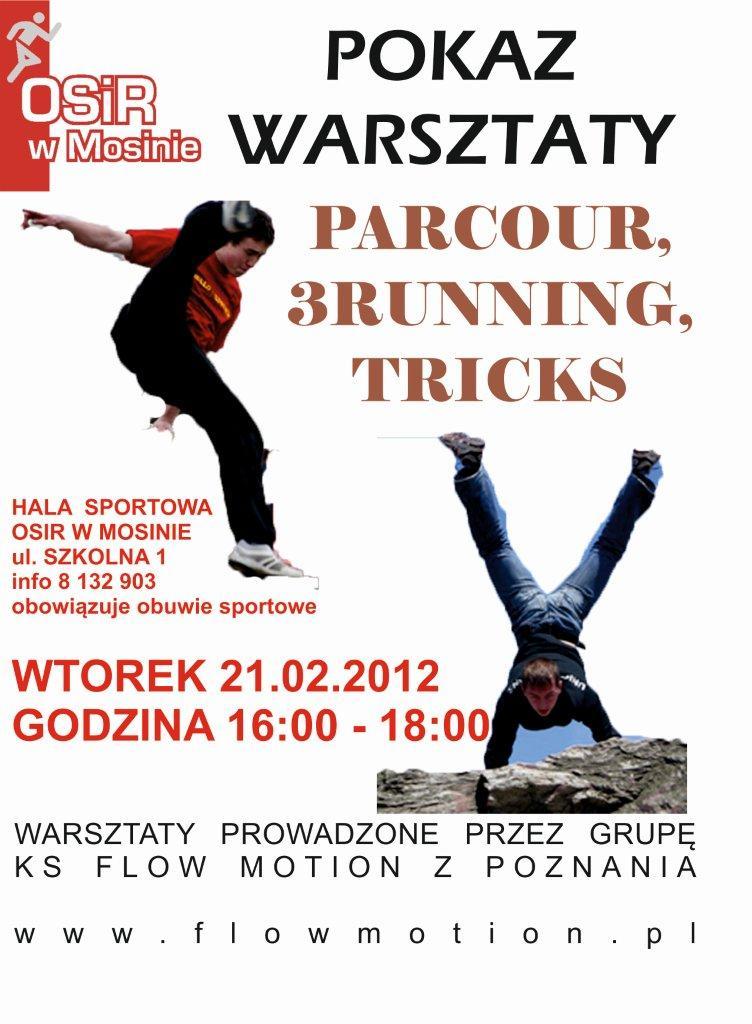 Warsztaty parkour i Freerunning - plakat