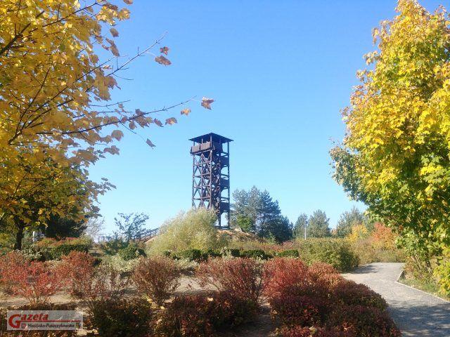 Wieża widokowa - Mosina, Pożegowo