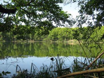 Jezioro Kociołek WPN