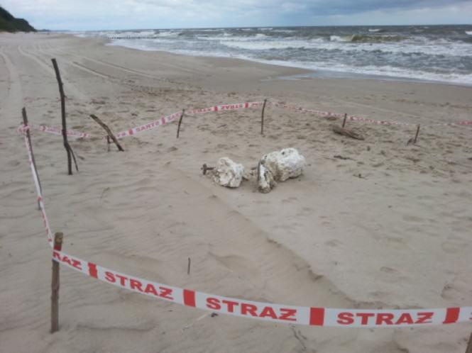 iperyt na plaży w Kołobrzegu