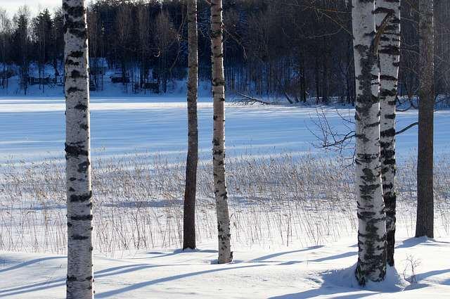 zima_pogoda_mróz