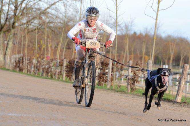 Krystyna Jasiczak z psem na rowerze