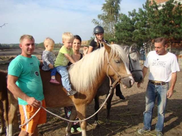 Rodzina Odważnych konie