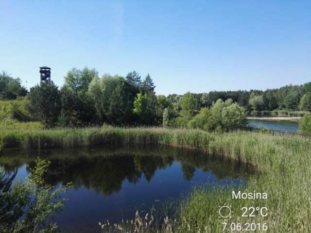 Glinainki na Pożegowie w Mosinie - wieża widokowa