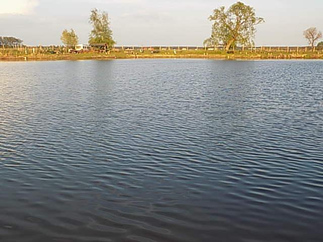 Krosno - łowisko u Macieja