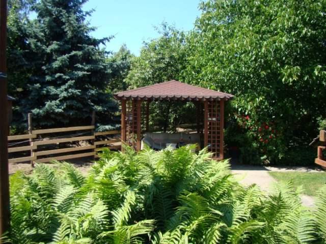 dom widok na teren konika i ogród