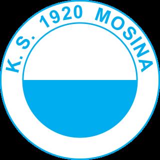 Klub Sportowy 1920 Mosina