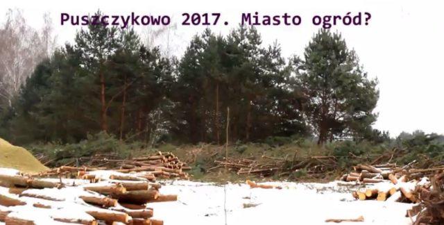 Wycinka drzew w Puszczykowie