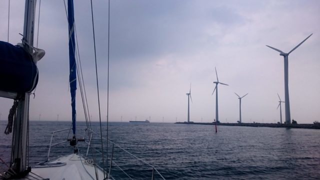 Fermy wiatrowe w Danii, niedaleko Kopenhagi
