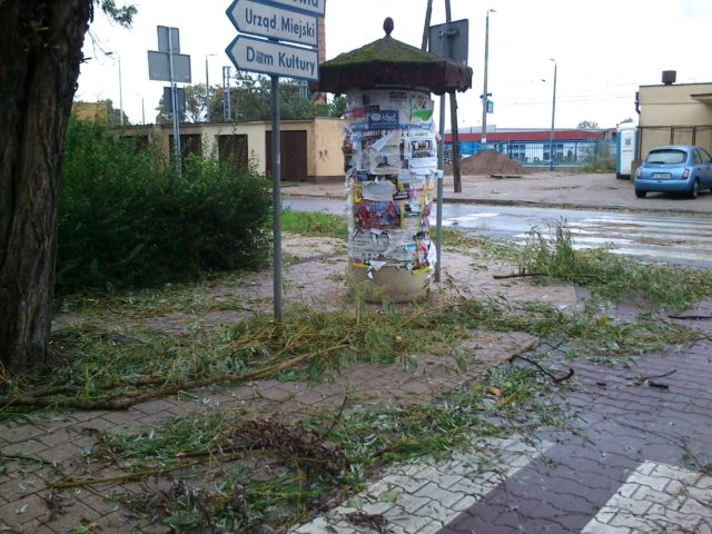 powalone gałęzie przy dworcu w Mosinie