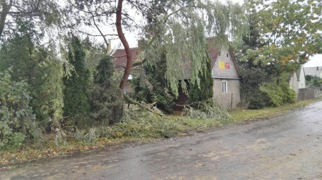 zniszczenia w Borkowicach