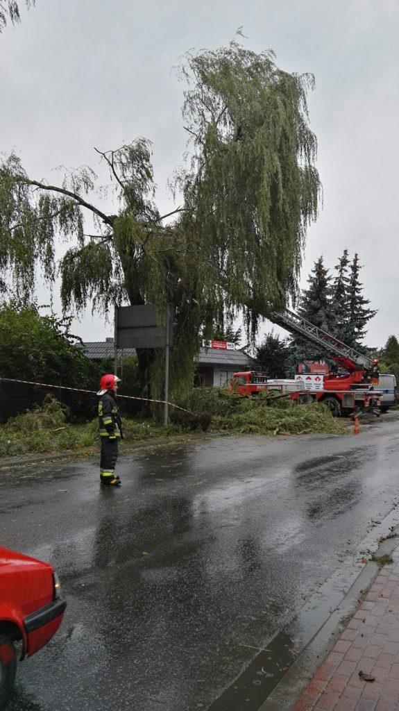 strażacy przy wycince konarów - ul. Wawrzyniaka w Mosinie