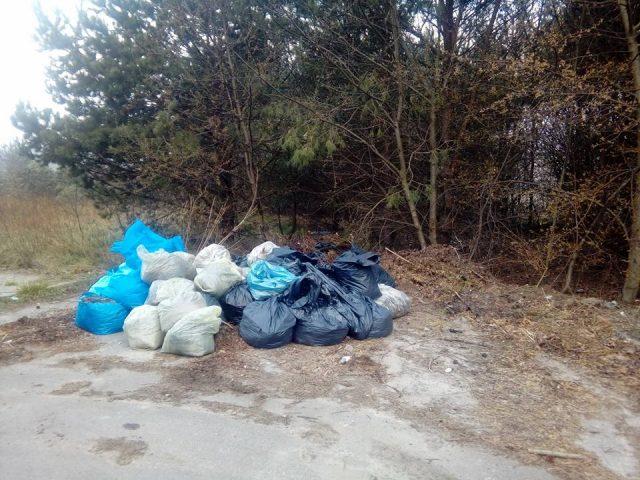 dzikie wysypisko na terenie gminy Mosina