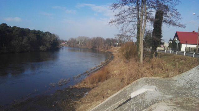 Rzeka Warta na wysokości wsi Wiórek