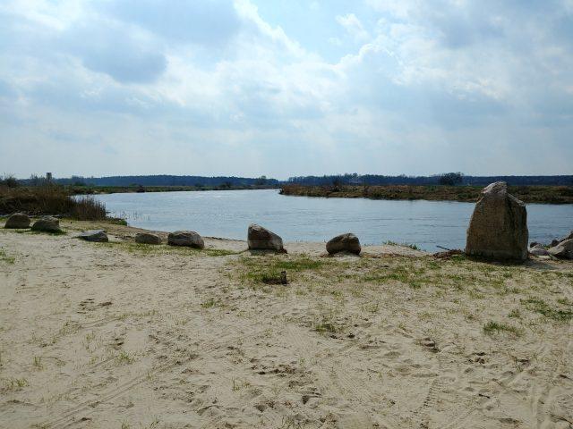 Rzeka Warta W Rogalinku
