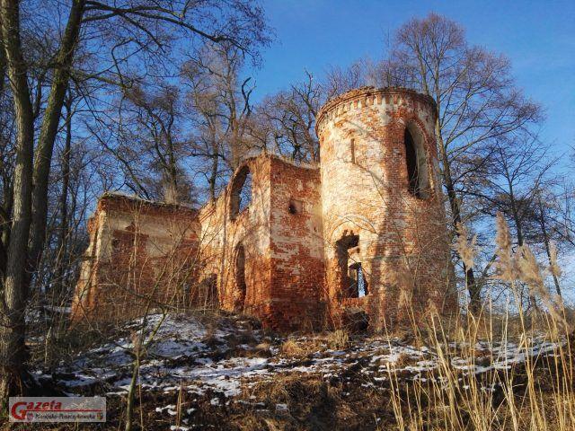 Ruiny zamku Klaudyny Potockiej na jeziorze Góreckim - widok z Wyspy Zamkowe