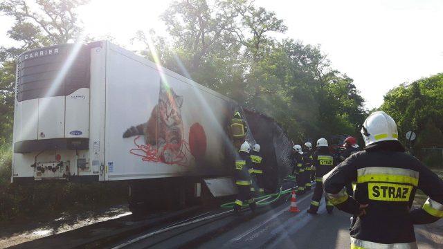 ugaszona ciężarówka pod Rogalinem