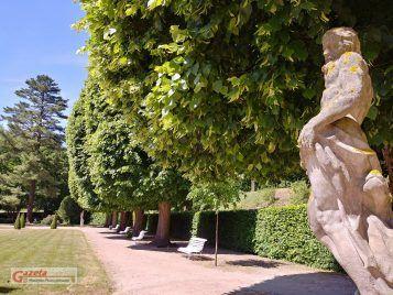 ogród - pałac w Rogalinie