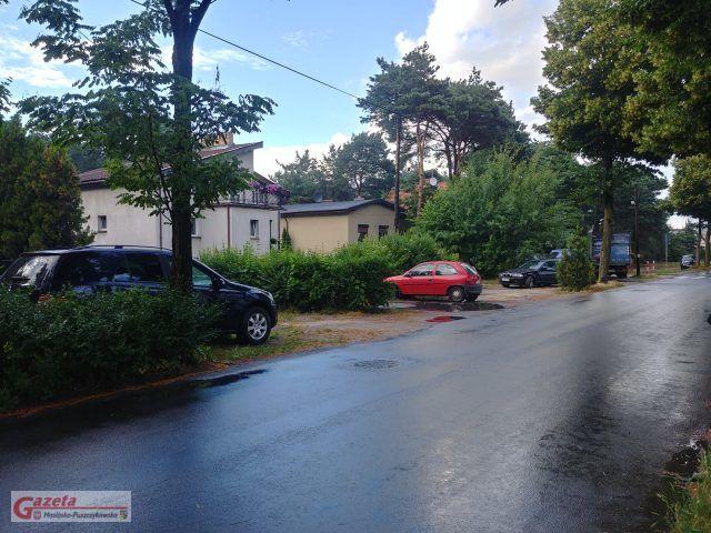 Zieleń do wycinki na ulicy Krosińskiej w Mosinie