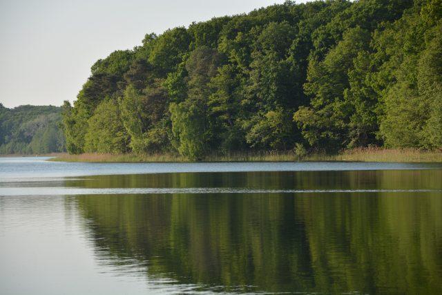 Obszar ochrony ścisłej Jezioro Góreckie