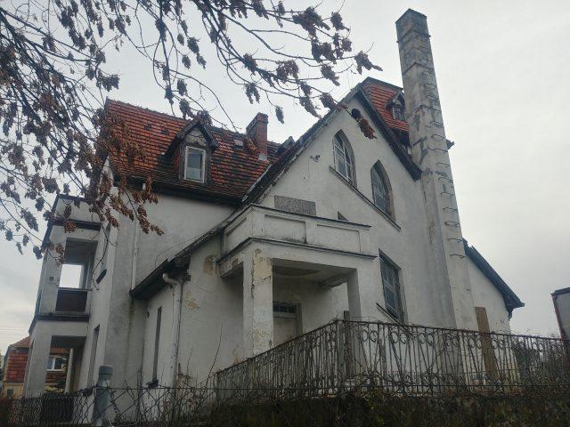 Kokotek (Kogutek) w Mosinie - 30.11.2018r.