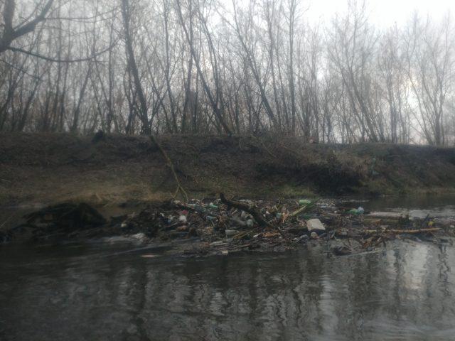 zalegające śmieci przy powalonych drzewach