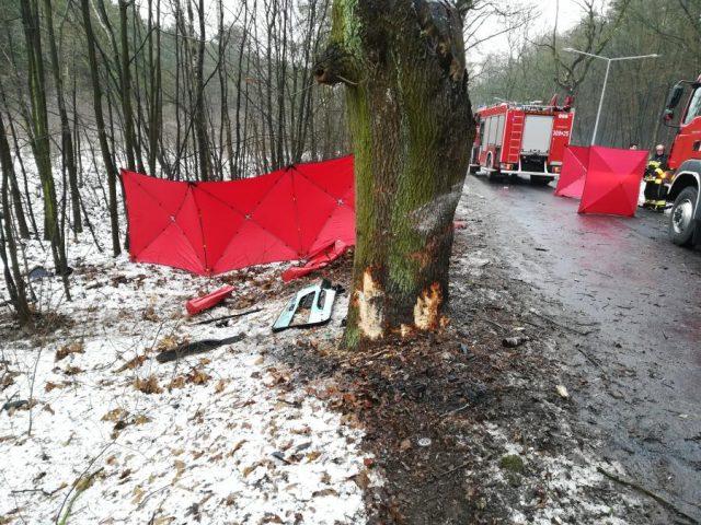 wypadek Mosina - Sowiniec - drzewo