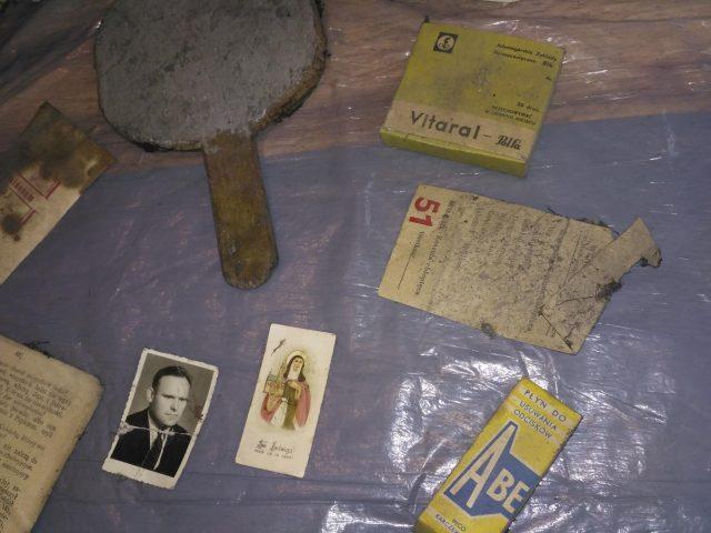 dawne eksponaty z Rogalinka Henryka Cikorskiego