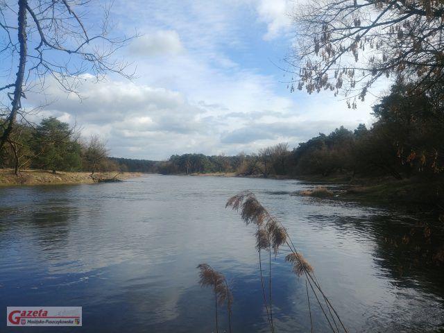 rzeka Warta na wysokości Puszczykowa