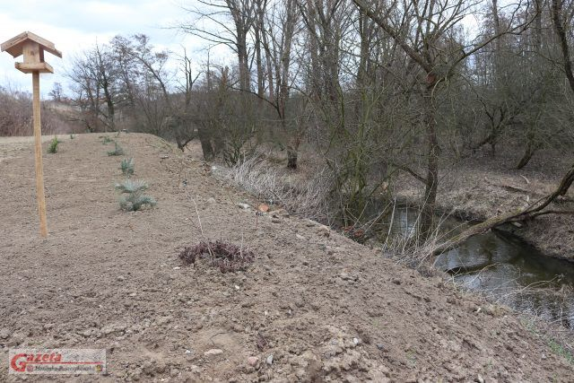 teren przygotowywany dla kajakarzy - rzeka Głuszynka w Czapurach