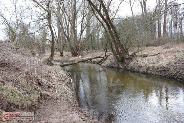 rzeka Głuszynka w Czapurach