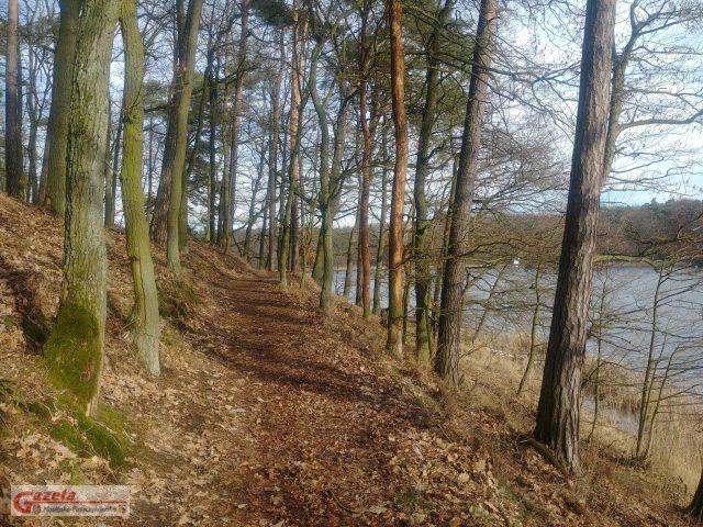 Wielkopolski Park Narodowy - szlak nad jeziorem Góreckim WPN