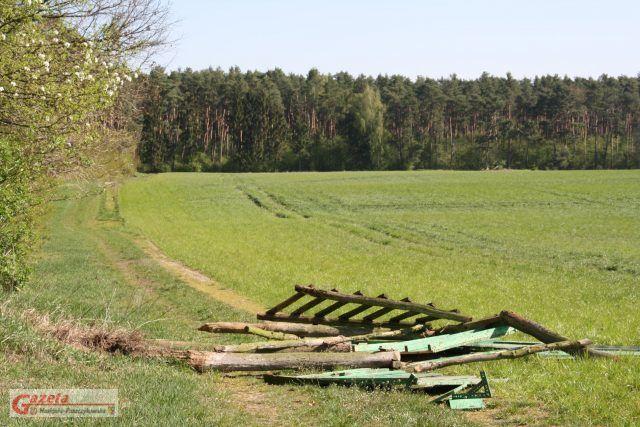 Jedna ze zniszczonych ambon na terenie Majątku Rogalin