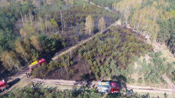 Ostatni pożar lasu - zdjęcie z drona
