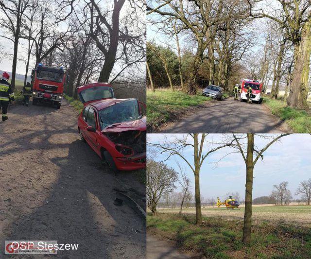 Wypadek Puszczykowo - Stęszew