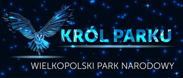 Król Parku - WPN