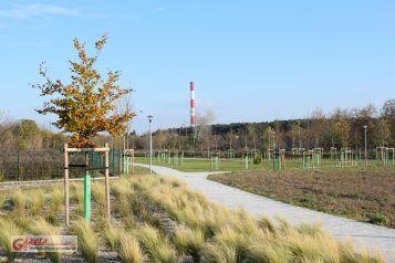 Park po północnej stronie Kanału Mosińskiego