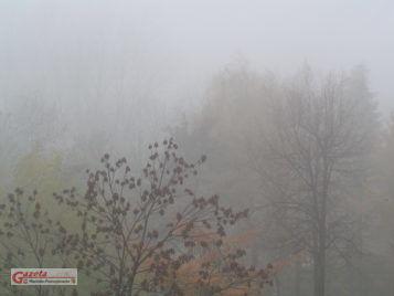 Mgła - Ostrzeżenie metrologiczne IMGW