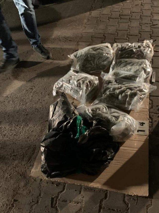 Policjanci zabezpieczyli 176 kilogramów narkotyków