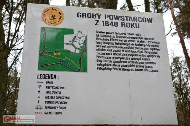 tablica informacyjna przy mogiłach Powstańców Wielkopolskich w pobliżu Starego Puszczykowa (WPN)