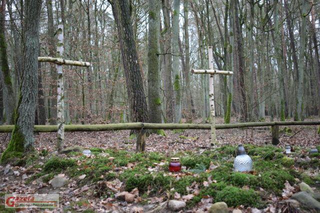 Groby Powstańców Wielkopolskich Puszczykowo WPN