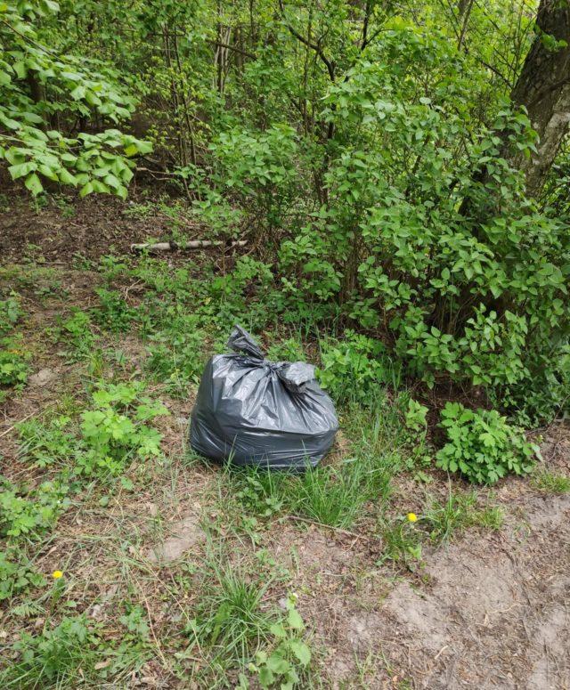 worek śmieci w lesie
