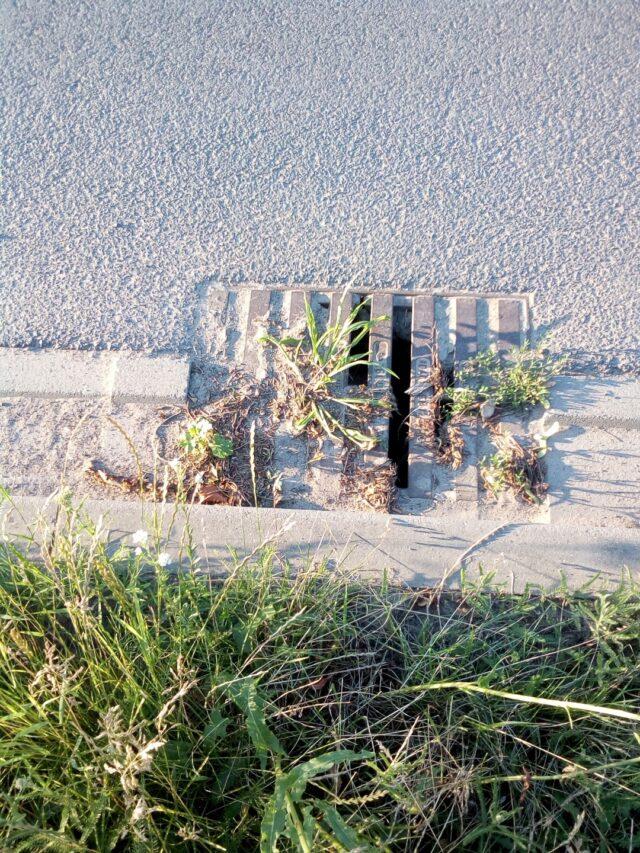 zatkana studzienka kanalizacyjna w gminie Mosina fot. Czytelnik GMP