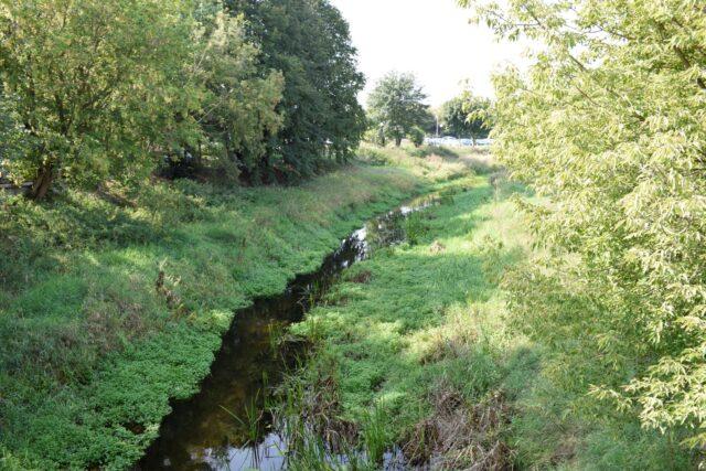 Kanał Mosiński w Mosinie