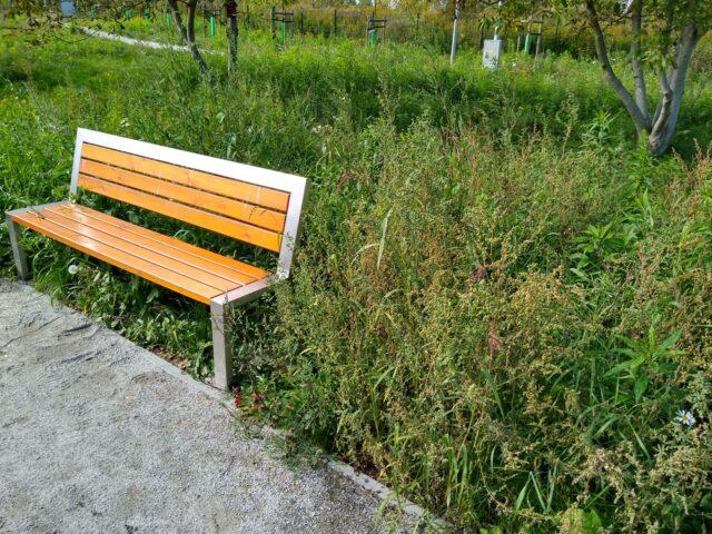 Parku Nad Kanałem Mosińskim przy ulicy Wagnera w Mosinie