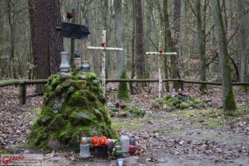 Groby Powstańców Wielkopolskich (Puszczykowo, WPN)
