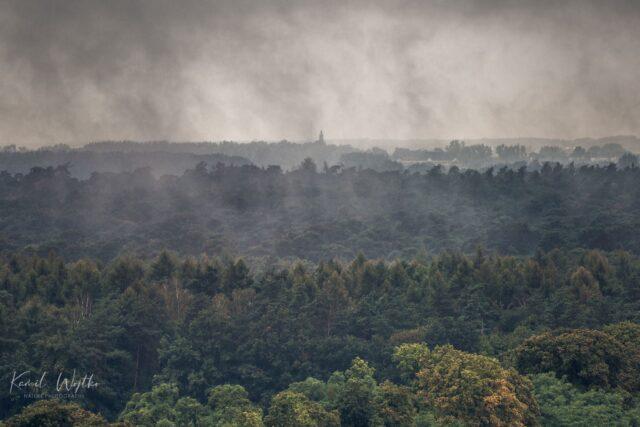 Widok z wieży widokowej na Pożegowie na kościół w Konarzewie (12 km w linii prostej)