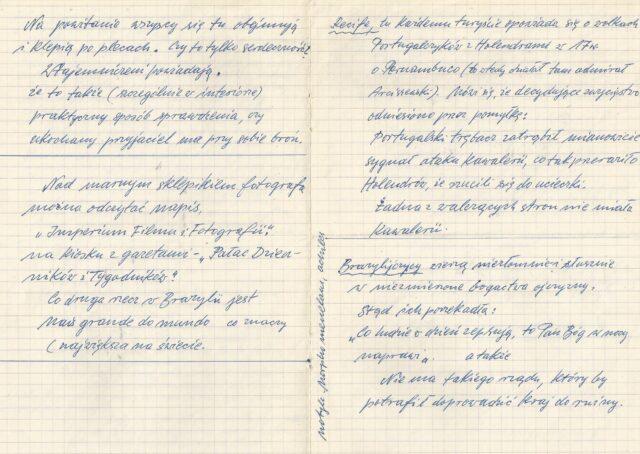 Zygmunt Pniewski - Notatki z podróży do Brazylii