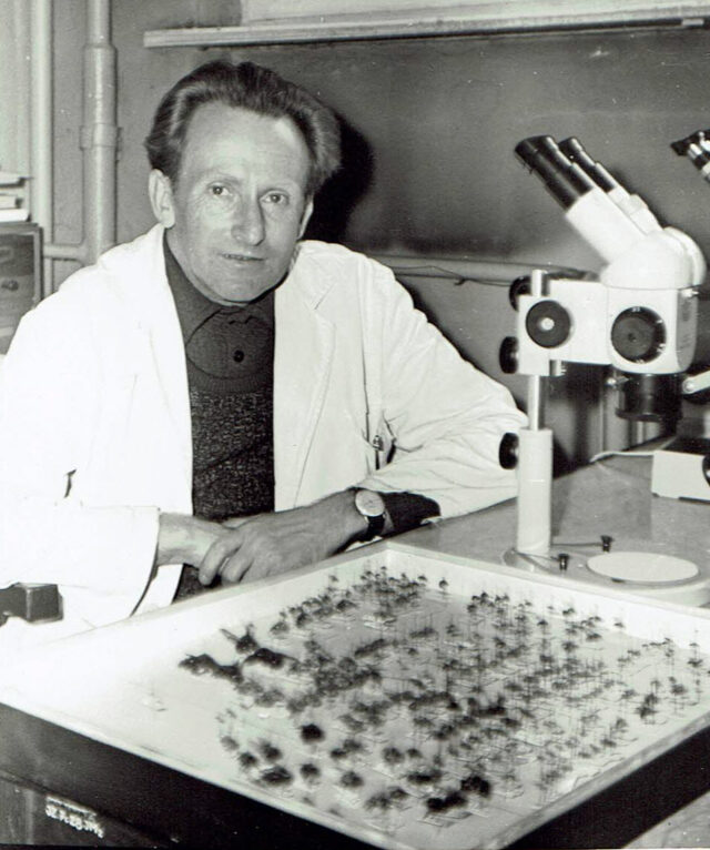 Zbigniew Pniewski przy pracy